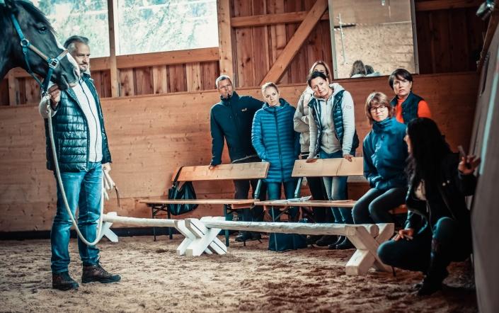 Business Coaching Leadership Training Pferde