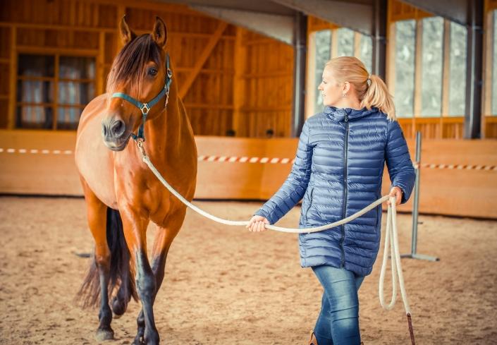 Barbara Hochreiter pferdegestütztes Coaching Bayern Starnberg